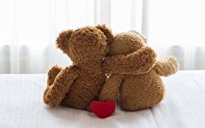 Fotos Teddybär Valentinstag Zwei Umarmen Hinten