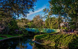 Bilder Vereinigte Staaten Disneyland Park Teich Brücken HDR Kalifornien Anaheim Design Bäume Natur