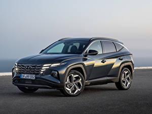 Fotos Hyundai Softroader Metallisch Tucson Hybrid (NX4), 2021 automobil