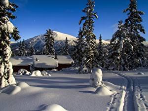 Bilder Gebirge Winter Gebäude Norwegen Schnee Weg Fichten mountain Storkletten Natur