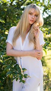 Hintergrundbilder Carla Monaco Blond Mädchen Posiert Kleid Hand Ast Blick junge frau