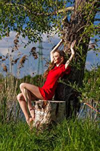 Fotos Baumstumpf Sitzt Kleid Bein Anastasia junge Frauen