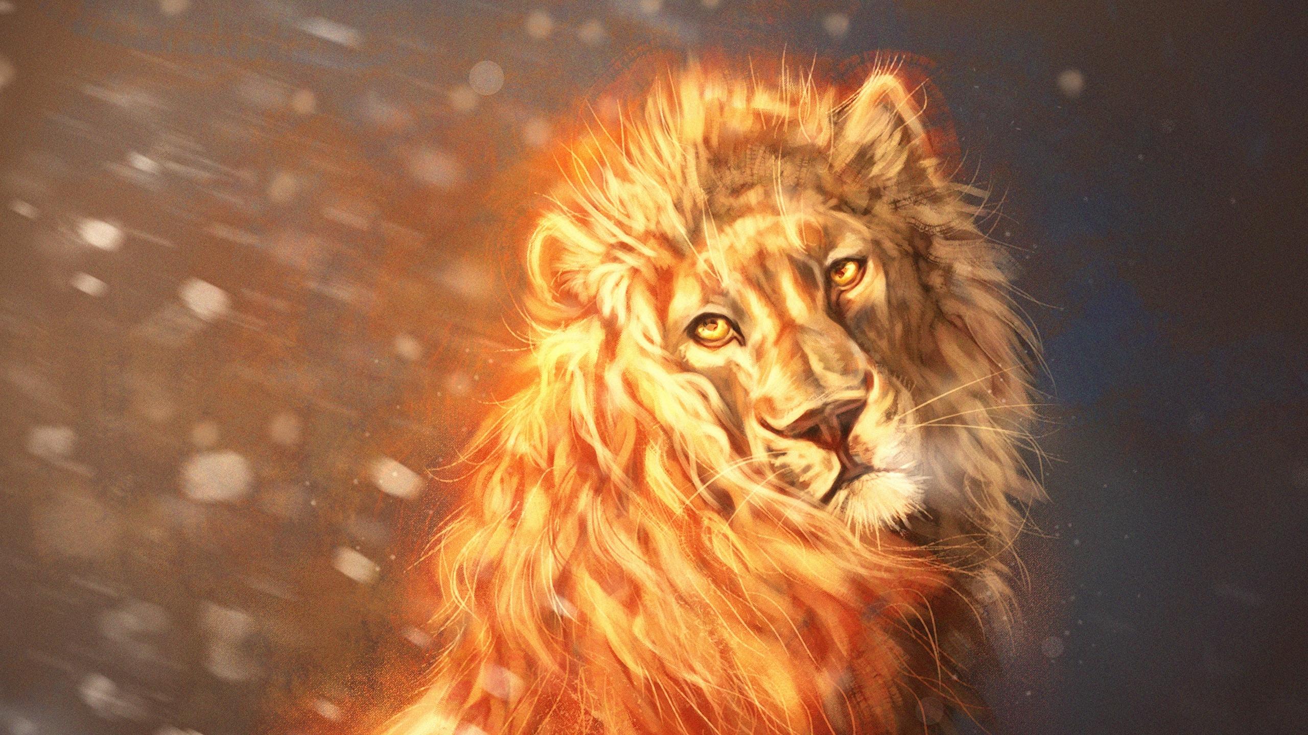 Fonds Decran 2560x1440 Lions Feu By Lesventie Voir Fantasy