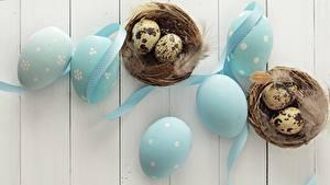 Fotos Ostern Feiertage Federn Bretter Eier Nest Band