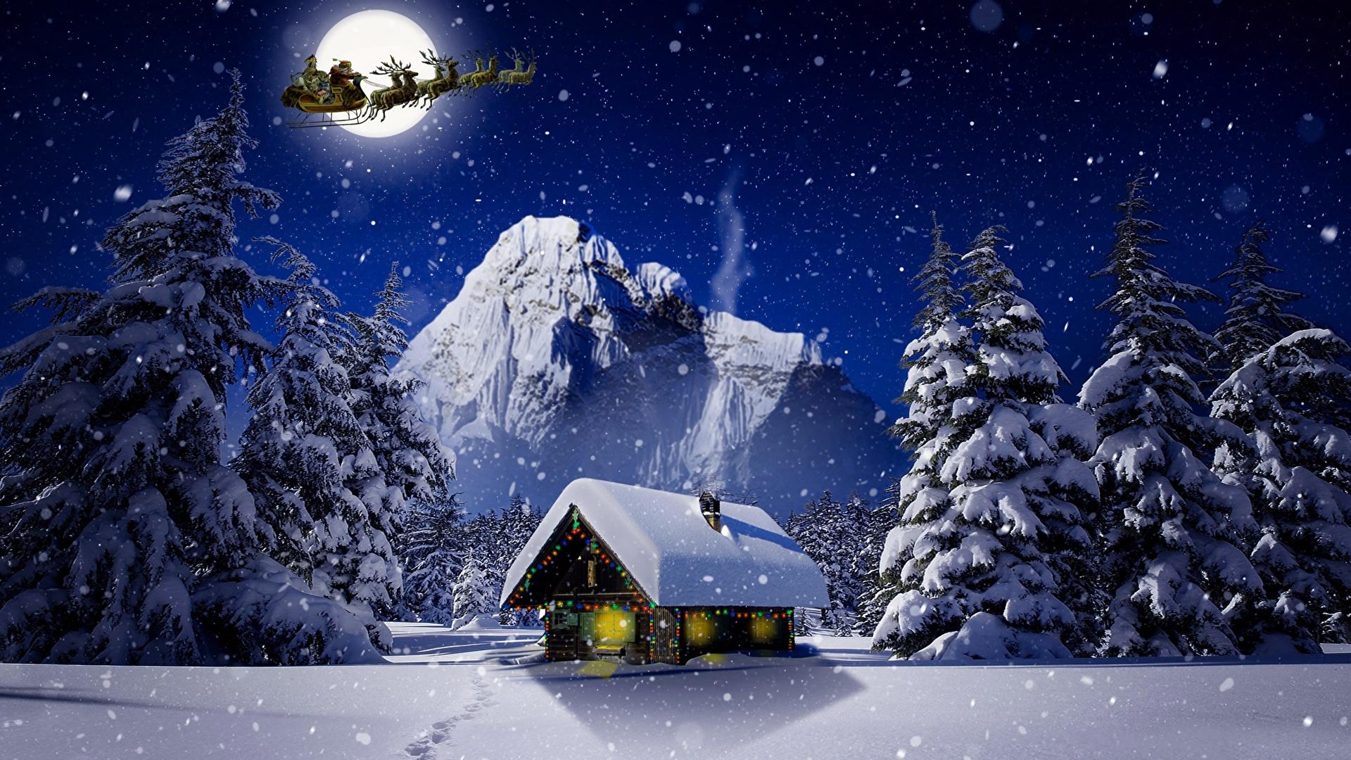 Images Deer Christmas Sleigh Nature Winter Moon Snow Night