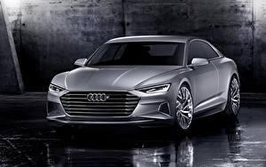 Bilder Audi Graue Metallisch Coupe 2014, Prologue, Concept auto