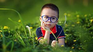 Hintergrundbilder Asiaten Unscharfer Hintergrund Jungen Brille Starren Gras kind