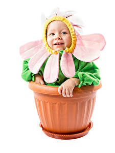 Image Creative Camomiles White background Baby Design Funny Flower pot Children