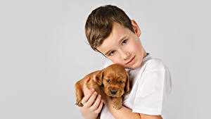 Wallpapers Boys Staring Puppies Gray background Children