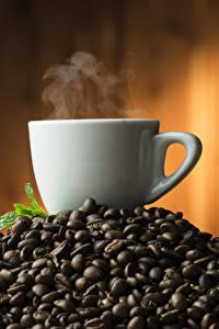 Bilder Kaffee Tasse Getreide Dampf Lebensmittel
