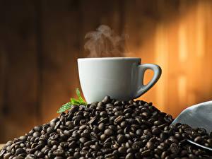 Bilder Kaffee Tasse Getreide Dampf
