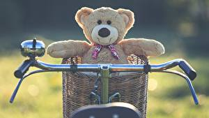 Hintergrundbilder Teddy Fahrradlenker Weidenkorb