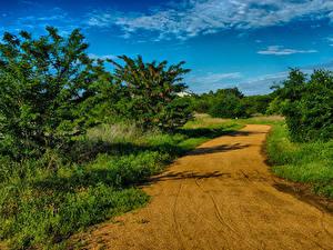 Hintergrundbilder Vereinigte Staaten Straße Himmel Texas Natur