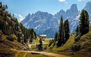 Fotos Gebirge Landschaftsfotografie Italien Alpen Weg Bäume Dolomites