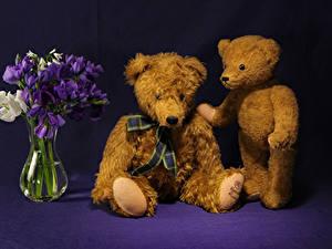 Hintergrundbilder Freesien Teddybär Vase Zwei Blumen