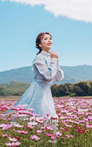 Fotos Grünland Asiaten Schmuckkörbchen Kleid Braune Haare Niedlich junge frau Blumen