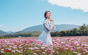 Fotos Grünland Asiaten Schmuckkörbchen Kleid Braune Haare Niedlich Blumen