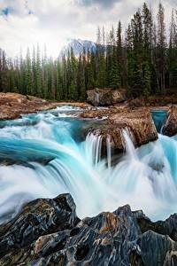 Bilder Wasserfall Flusse Landschaftsfotografie Kanada Steine Wälder
