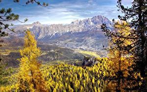 Bilder Italien Gebirge Wälder Landschaftsfotografie Fichten Cortina d'Ampezzo