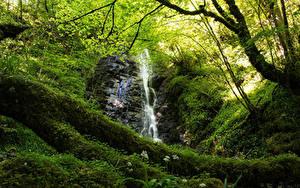 Hintergrundbilder Schottland Wasserfall Felsen Laubmoose Ast Highlands Waterfall Natur