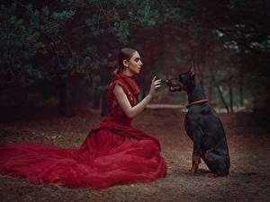 Photo Dogs Sit Doberman Pinscher Frock Anastasia Dobrovolskaya Girls Animals