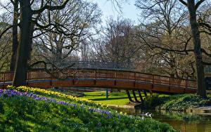 Hintergrundbilder Deutschland Frühling Park Brücken Flusse Bäume Karlsruhe