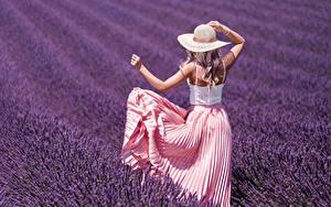 Hintergrundbilder Acker Lavendel Blondine Der Hut Hinten Hand Kleid junge frau