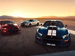 Bilder Ford Drei 3 Strips Mustang Shelby GT500 2020 Autos