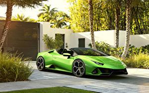 Bilder Lamborghini Gelbgrüne Metallisch Roadster 2019 Huracan EVO Spyder