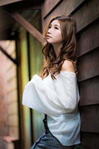 Fotos Asiatische Posiert Bluse Braune Haare Mädchens