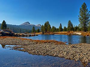 Bilder Vereinigte Staaten Park Wälder See Yosemite Natur