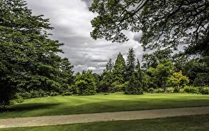 Fotos Vereinigtes Königreich Park Rasen Bäume Ast Garden Harlow Carr