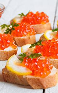 Bilder Meeresfrüchte Kaviar Butterbrot Brot Bretter