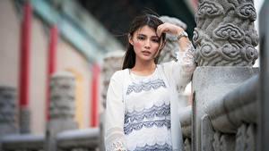 Bakgrunnsbilder Asiater Posere Uklar bakgrunn Ser Brunette jente Unge_kvinner