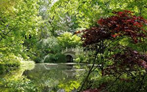 Hintergrundbilder Deutschland Park Teich Brücken Bäume Strauch Duisburg