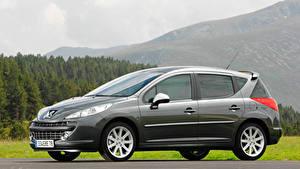 Fotos Peugeot Seitlich Graue Metallisch Kombi 207 RC SW auto