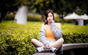 Bilder Asiaten Sitzen Bein Unterhemd Blick junge frau