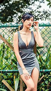 Hintergrundbilder Asiatisches Kleid Dekolleté Zaun Blick junge Frauen