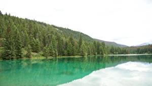Photo Canada Parks Lake Forests Jasper Park Alberta, Rocky Mountains Nature