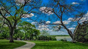 Bilder Vereinigte Staaten Park Texas Rasen Bäume Dallas Natur