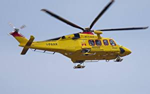 Fotos Hubschrauber Gelb Flug