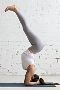 Fotos Fitness Gymnastik Mauer Trainieren Bein Braunhaarige Mädchens Sport