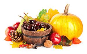 Fotos Herbst Kürbisse Weintraube Äpfel Nussfrüchte Weißer hintergrund Zapfen Blattwerk das Essen