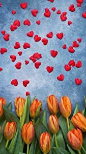 Papéis de parede Dia dos Namorados Tulipas Coração Flores