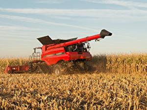 Bilder Acker Landwirtschaftlichen Maschinen Rot Ähre