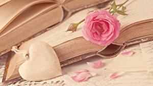 Papéis de parede Dia dos Namorados Rosas Cor-de-rosa Coração Livros Pétala Flores