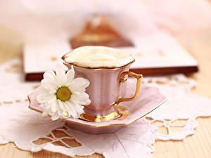 Hintergrundbilder Kaffee Cappuccino Kamillen Tasse