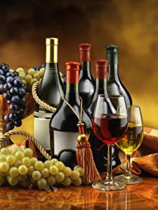 Fotos Wein Weintraube Flaschen Weinglas