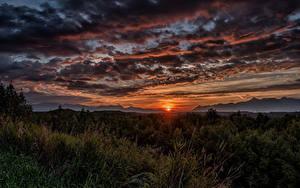 Fotos Alaska Sonnenaufgänge und Sonnenuntergänge Himmel Abend Landschaftsfotografie Wolke Gras Sonne Wasilla