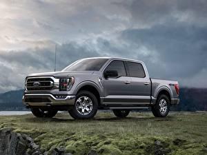 Bureaubladachtergronden Ford Pick-up Grijs Metallic Zijaanzicht F-150 Auto